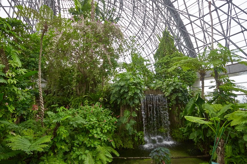 滝が流れる大温室は、植物の圧倒的なパワーを感じる空間